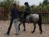 tabor-western-041