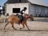 tabor-western-028